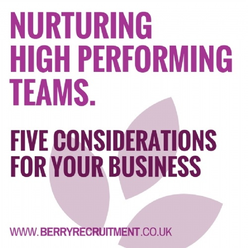 Nurturing High Performing Teams
