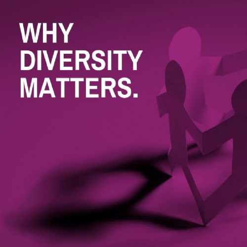 Why Diversity Matters.